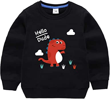HILEELANG Boy Sweatshirts Pullover Cotton Casual Crewneck Winter Long Sleeve Tops Sweater Shirts