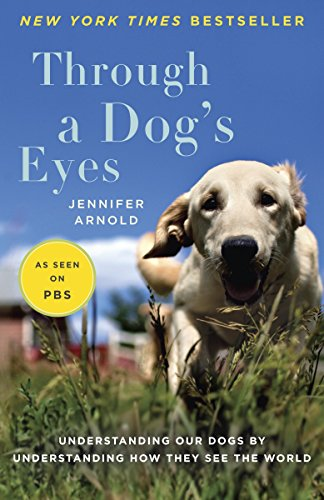 Through a Dog's Eyes: Understanding Our Dogs by Understanding How They See the World