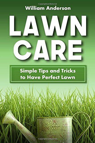 Lawn Care: Simple Tips and Tricks to Have Perfect Lawn