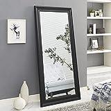 """Naomi Home Framed Mirror Black/65"""" x 31"""""""