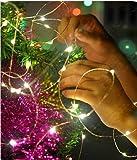Catena LED stringa luminosa decorazione di natale a batteria to invisibile 20 microled e filo argento per albero di natale presepe addobbi natalizi e decorare la casa di AcquistoWeb