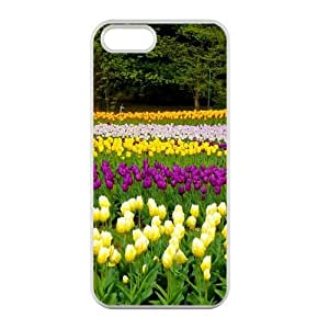 Welcome!Iphone 5/5S Cases-Brand New Design Beautiful Tulip Printed High Quality TPU For Iphone 5/5S 4 Inch -02