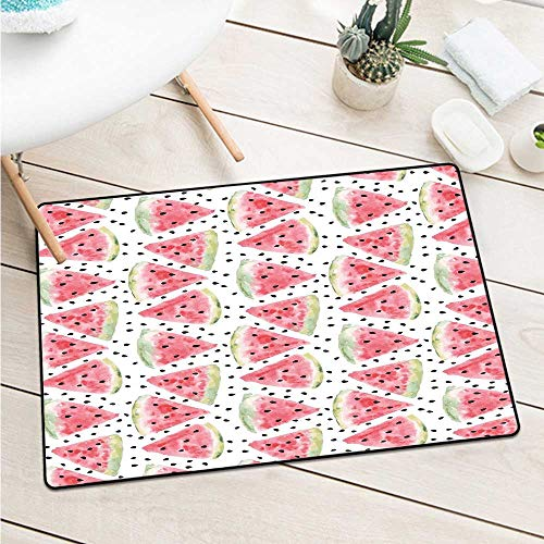 Watercolor Welcome Door Mat Pattern of Sweet Juicy Pieces Watermelon with Seed Tropical Summer Catch Dust Snow and Mud (W15.7 X L23.6 inch,Coral Pale Green Black)