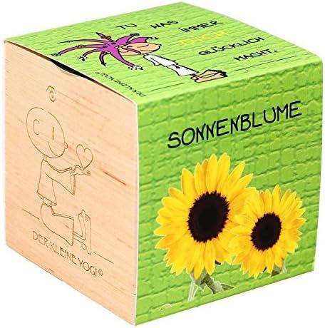 Der kleine Yogi: Pflanzen im Holzwürfel - GLÜCKLICH - Sonnenblume