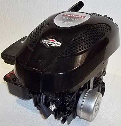 Amazon.com: Briggs & Stratton Vertical Motor 5,5 TP 550 ...