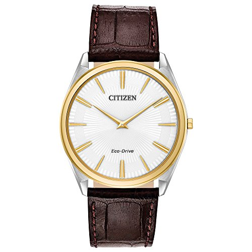Citizen Watches Men's AR3074-03A Eco-Drive Brown One Size