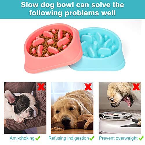 WERFORU 2 Pack Plastik Hundenapf Langsames Essen Kein Ersticken Anti-Schluck Langsamer Bowl Feeder für Spaß Stop Aufblähen für Hunde Umweltfreundliche Labyrinth-Schüssel für schnelle