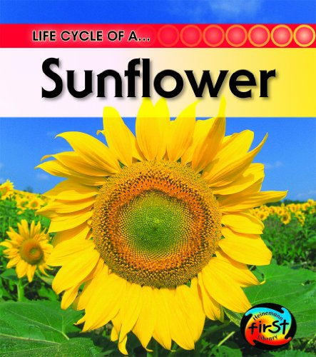 Sunflower (2nd Edition) (Life Cycle of a . . .)