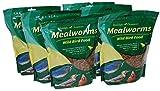 Wildlife Sciences Dried Mealworms 42oz, Six 7oz Pouches