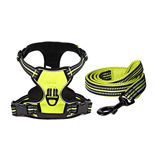 Aglaia Home No Pull Dog Harness and Leash Set, Large, Green, Metal Front Clip and Back Clip Dog Harness with Handle, 3M Reflective Pet Vest, Adjustable Oxford Material for Easy Control