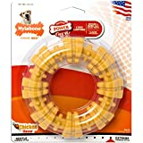 Nylabone Dura Chew Large Textured Ring Bone Dog Chew Toy