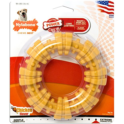 Keep your dog entertained with Nylabone Dura Chew Large Textured Ring Bone Dog Chew Toy