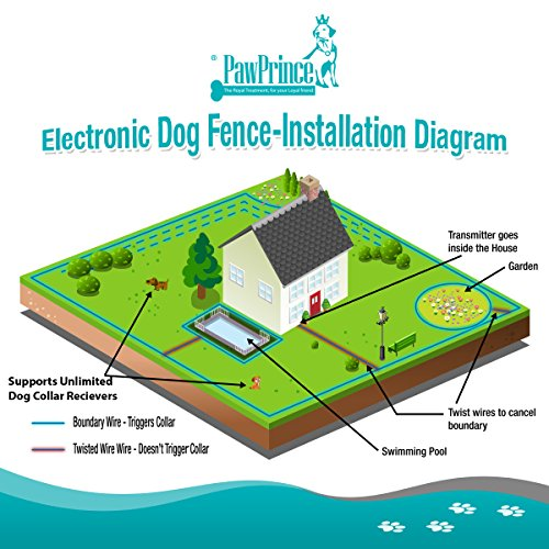amazon com 100 levels dog fence underground dog shock fence  amazon com 100 levels dog fence underground dog shock fence train all breeds & sizes efficiently 300 meters of 30awg fence wire (0 8 acres) 2