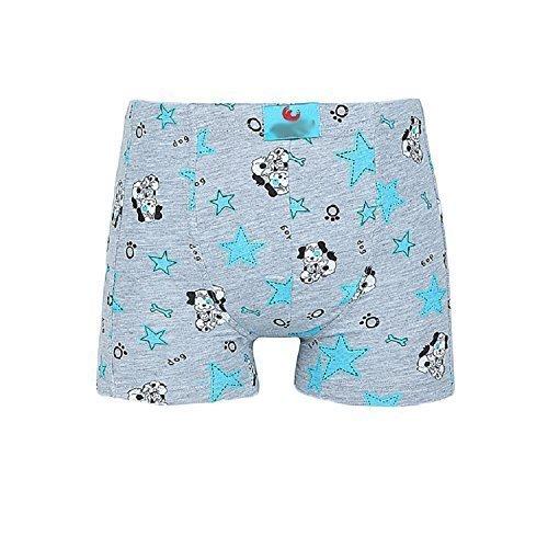 Shorts De Adolescente (10 Paquete) Ropa interior Calzoncillos Bragas Niños, Gris con estampado