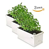 Patch Planters Easy, Compact Self Watering Herb & Greens Planter (3 Pack)