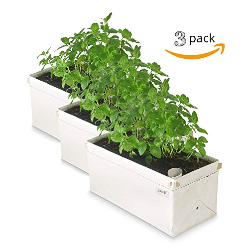 Patch Planters Easy, Compact Self Watering Herb & Greens Planter (3 Pack) - Patio Herb Garden