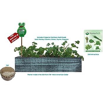 Amazon Com H Potter Succulent Blue Flower Garden Window