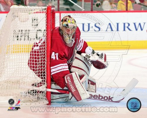 - Mike Smith Phoenix Coyotes 2013 NHL Action Photo 8x10 #2