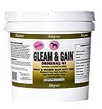 Adeptus Nutrition Gleam and Gain Original 41 EQ Joint Supplements, 10 lb./10 x 10 x 10''