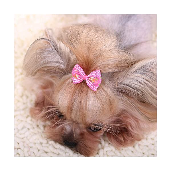 YOY 40 Pcs Adorable Grosgrain Ribbon Pet Dog Hair Bows with Elastics Ties – Stretchy Rubber Bands Doggy Kitty Topknot… Click on image for further info. 6