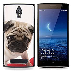 Ihec Tech Pug Puppy Dog británica Raza Canina / Funda Case back Cover guard / for OPPO Find 7 X9077 X9007