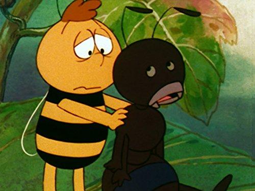 Jama the Ant -