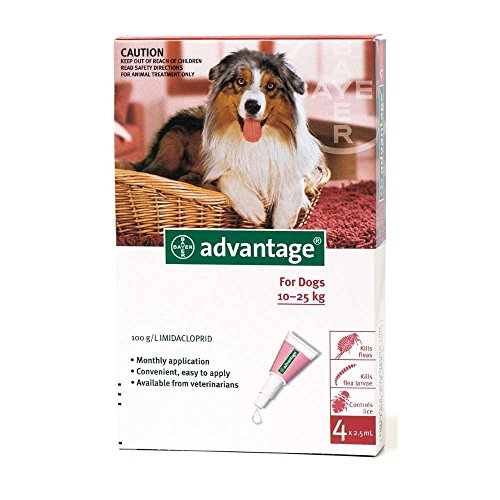 Advantage Large Dogs 21 - 55 Lbs - 4 Doses