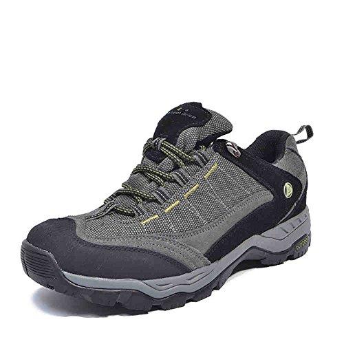 Nave en desierto, hombre Low Rise Senderismo impermeable zapatos Grey Green