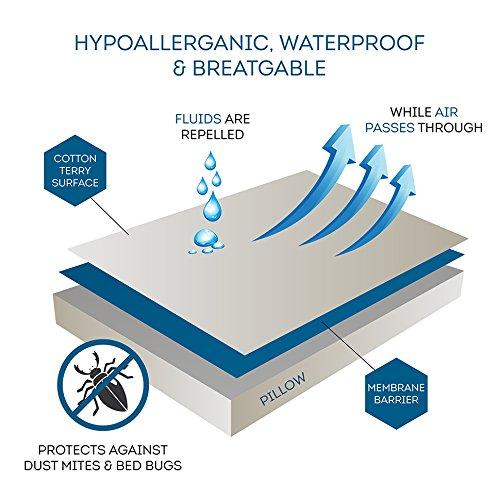 Review Everlasting Comfort 100% Waterproof