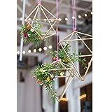 Agordo 2pcs Geometric Flower Plant Holder Basket Rustic Wedding Hanging Decor DIY