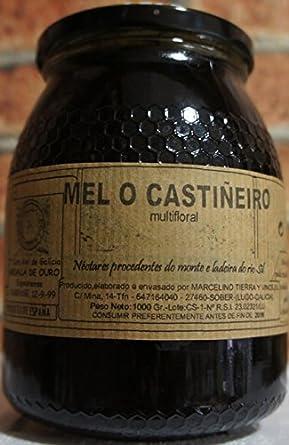 miel de Galicia o castiñeiro (ribeira sacra,Lugo) : Amazon ...