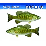Bones Outdoors Huesos al Aire última intervensión bpf2500 Low-TAC Mini Smallmouth Bass calcomanía para para Camiones y Coches