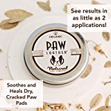 Natural Dog Company - Paw Soother | Heals