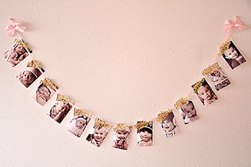 1st birthday girl decorations - 12 month photo banner
