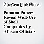 Panama Papers Reveal Wide Use of Shell Companies by African Officials   Scott Shane