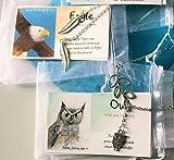 Smiling Wisdom - Owl, Eagle, Totem Animal Gift Set