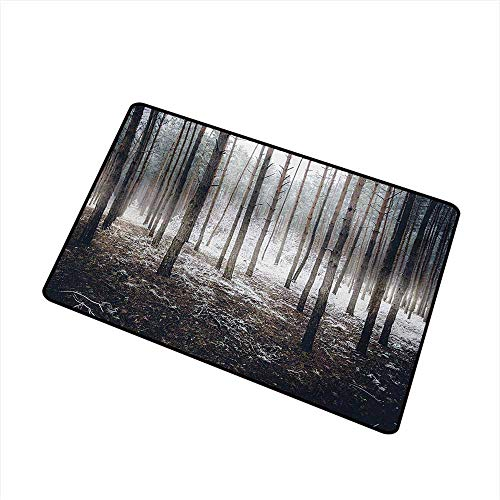 BeckyWCarr Winter Welcome Door mat Scene of Dark Spooky Misty Forest Veiled with Fog Mystic Birches Print Door mat is odorless and Durable W29.5 x L39.4 Inch,Brown White -
