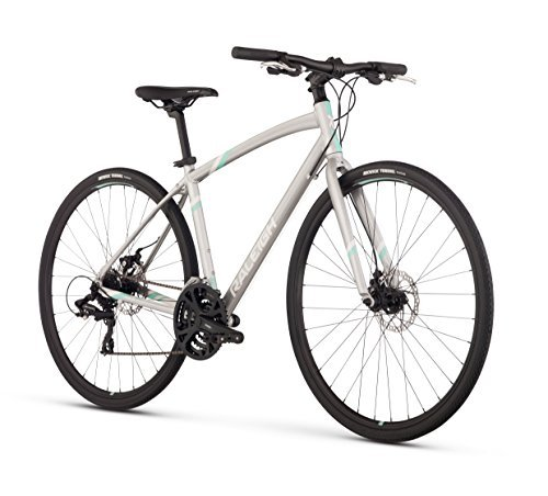 Raleigh Bikes Women's Alysa 2 Urban Fitness Bike 17/Medium Silver [並行輸入品] B078HLYW5D