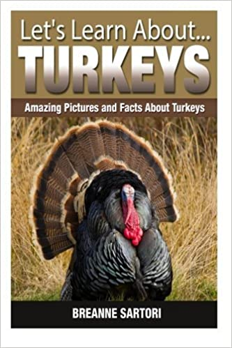 Turkeys: Amazing Pictures and Facts About Turkeys (Let's Learn About) by Breanne Sartori (2014-12-10)