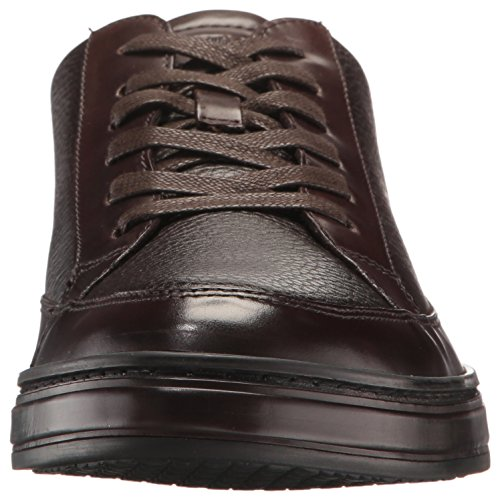 York Brand Brown Fashion Cole Sneaker Men's Kenneth New Stand BExnf