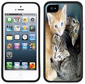 Cute Kittens Cats Handmade iPhone 5 Black Bumper Plastic Case