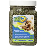 OurPets North American Grown Catnip Jar, 1-1/4-Ounce