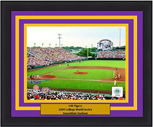 (LSU 2009 College World Series at Rosenblatt Stadium 8