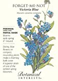 """""""Victoria Blue"""" Forget-Me-Not Seeds"""