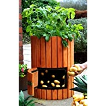 Original Wooden Potato Barrel - H60cm x D35cm