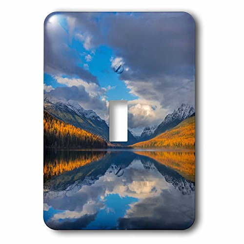 3dRose Danita Delimont - Lakes - Autumn colored mountains reflect into Bowman Lake, Glacier NP, Montana - Light Switch Covers - single toggle switch ()