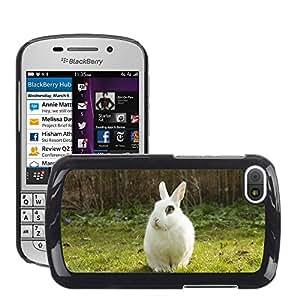 Hot Style Cell Phone PC Hard Case Cover // M00113738 Rabbit Bunny Spring Garden Pet // BlackBerry Q10