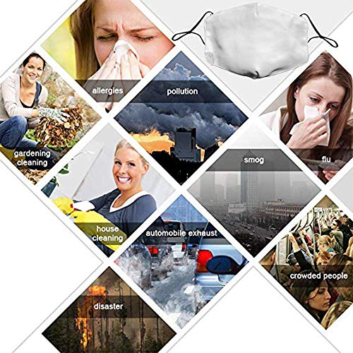100% Polyester Fibe Dust Mask Anti Pollution Breathable Mask Reusable Adjustable Environmentally Ear Loop Face Mask Biker for Life Motorcycle