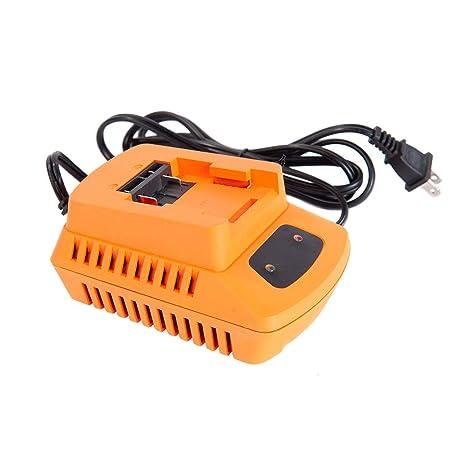 Amazon.com: GARCARE - Cargador de batería de litio para ...