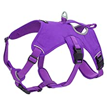 Best Pet Supplies, Inc. Voyager Padded and Breathable Control Dog Walking Harness for Big/Active Dogs, (Purple, Small)